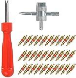 32-Teilig Reifenventilentferner Reifen ventileinsatz (Einkopf-Ventil Entferner+ 4 in1 Reparatur-Werkzeug) für Auto,Motorrad,Fahrrad