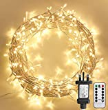 STARKER Fairy Lights Plug in, 30m 300 LED Outdoor String Lights Mains Powered,Christmas Lights Indoor with Remote Control for Garden, Bedroom, Party,Wedding,Festival Decoration(Warm White,Clear Cable)