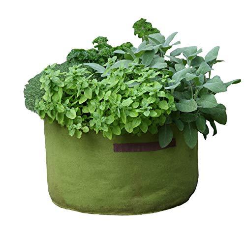 Tierra Garden Haxnicks - VIG080101 - Pots « Vigo » - Vert, 18 x 18 x 20 cm, Green, 45 x 25 cm