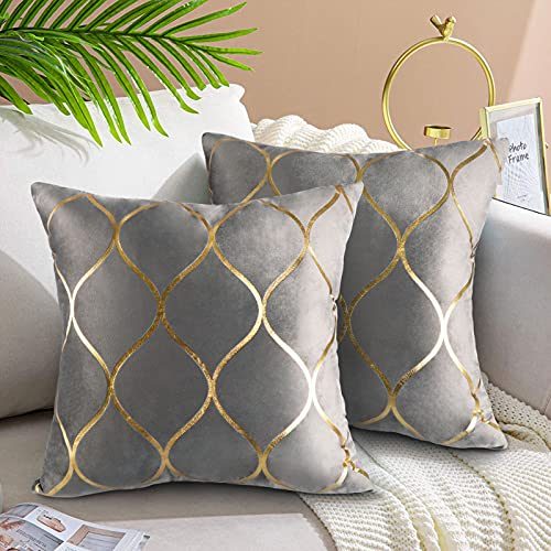 Grey Cushions Covers 2 Pack 18x18 Inch Cushion Cases Velvet Decorative Square Grey Cushions for Sofa Couch Bed Living Room Home Decor