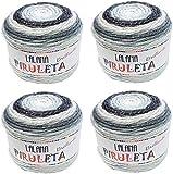 Hilo de Acrilico y lurex Ovillo de Lana para Tejer Crochet Ganchillo o Punto Torrijo PIRULETA 150g (4 unidad *150g) | MULTICOLOR 2650