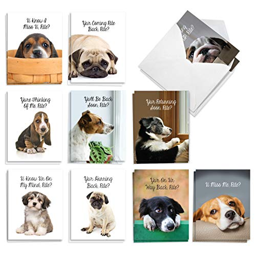 The Best Card Company - 20 Doggone Missing You Cards (4 x 5.12 Inch) - Sad but Cute Puppies, Lonely and Waiting (10 Designs, 2 Each) - Miss U Doggies AM9157MYG-B2x10