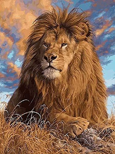 Toudorp Malen nach Zahlen Kits 16x20 Zoll Leinwand Ölgemälde für Erwachsene und Anfänger DIY Acrylmalerei, mit Acrylfarben und Pinseln - Löwe (ohne Rahmen)
