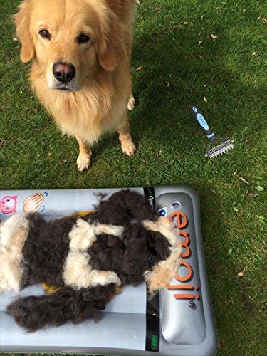 PetPäl Wohlfühl Hundebürste | Effektive Unterwollbürste | Massage Fell-Entfilzungsstriegel | Enthaarungs-Bürste | deShedding | Universal-Striegel für Mittel bis Langhaar | Schmerzfreies Ausdünnen | Effiziente Fellpflege | 2 Gratis Abstracts | 100% PetPäl-Zufriedenheitsgarantie (Blau) - 8
