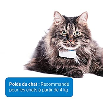 Tractive traceur GPS pour chat, Portée illimitée, Suivi d'activité, Pour tout collier chat, Étanche, Léger (Dernier modèle)