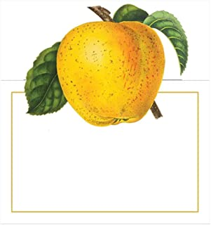 Caspari Botanical Chintz Die-Cut Place Cards in Apple, 40 Included