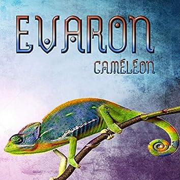 Caméléon