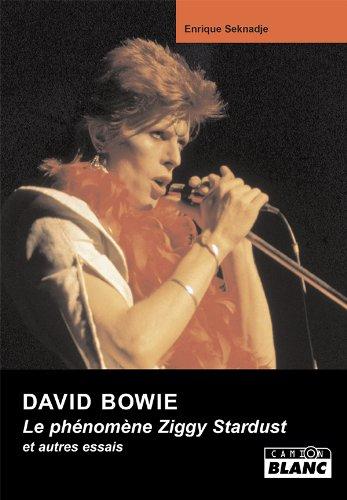 DAVID BOWIE Le Phénomène Ziggy Stardust