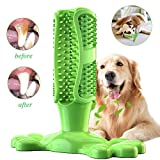 GingerUP Cepillo de Dientes en Perro Jugar - Dog Brushing Stick - Limpieza de higiene Dental - Juguete para Masticar S