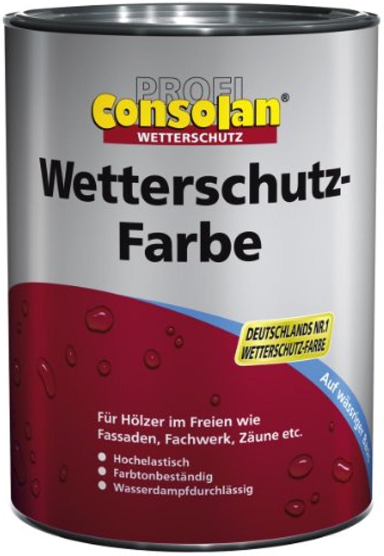 Consolan Profi Wetterschutzfarbe RM 217 silbergrau 10 Liter