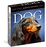Dog Page-A-Day Gallery Calendar 2021