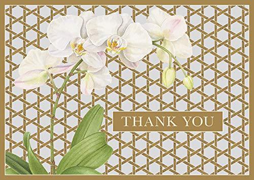 Caspari 8 wenskaarten Notelets enveloppen - Onderhoudend met Caspari Winter Witten door Karen Kluhlein Thank You Notes, Pack van 8