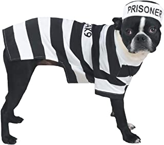 Casual Canine Prison Pooch Pet Costume