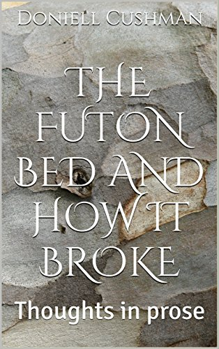 The Futon Bed and How It Broke: Thoughts in prose (English Edition)