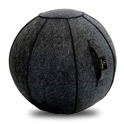 Sitting Ball Chair with Handle for Home, Office, Pilates, Yoga, Stability and Fitness - Includes Exercise Ball with Pump (Peruvian Charcoal, 24 in)