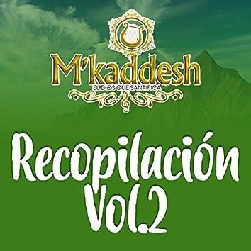 Recopilación Vol.2