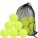 18pcs Pelotas de Tenis,con Bolsa de Malla,Pelotas de Práctica de Tenis Duraderas,Bolas de Tenis,Pelota Bote para Adultos Niños Mascotas,Pelotas de Tenis para Competición y Entrenamiento