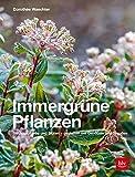 Immergrüne Pflanzen: Struktur, Farbe und Blüten - Gestalten mit Gehölzen und Stauden (Gartengestaltung)