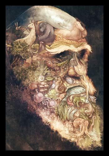 Quadro Arte A Origem Das Espécies Charles Darwin 42x29cm