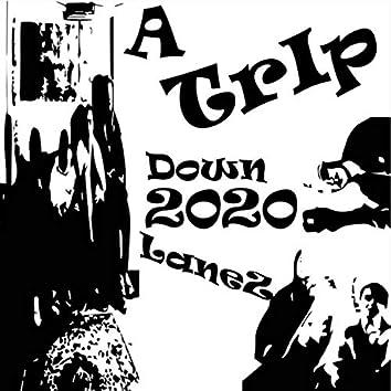 A TRIP DOWN 2020LANES