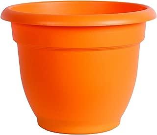 Bloem 814174024751 Ariana Self Watering Planter, 8