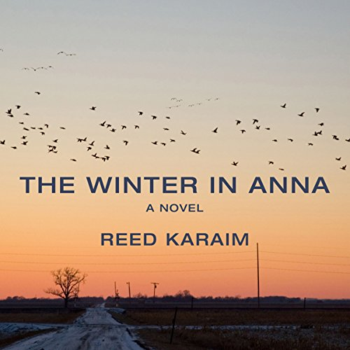 The Winter in Anna audiobook cover art