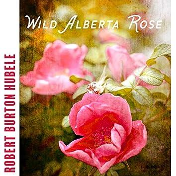 Wild Alberta Rose