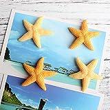 shenlanyu Imanes de nevera 4 unids/set resina estrella de mar imán lindo simulación mar animal imán botón refrigerador mensaje etiqueta engomada decoración del hogar