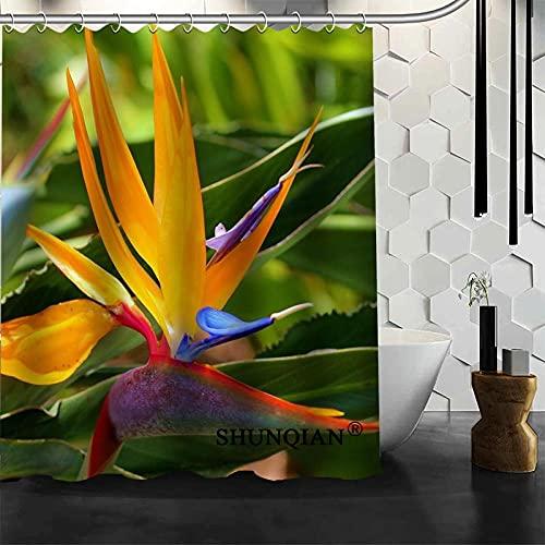 Cortina de banheiro moderna Pássaro do paraíso Cortina de chuveiro de poliéster para banheiro 150 x 180 cm