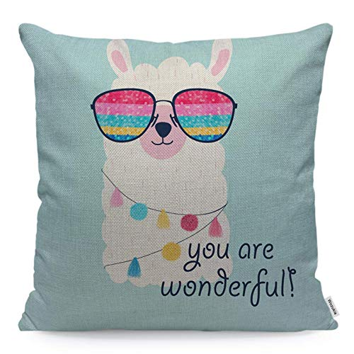 Llama Funda de almohada con gafas de sol de colores para colgar accesorios You are Wonderful Felicitación cuadrada Funda de cojín para el hogar, el coche, la cocina, el algodón, 45,7 x 45,7 cm