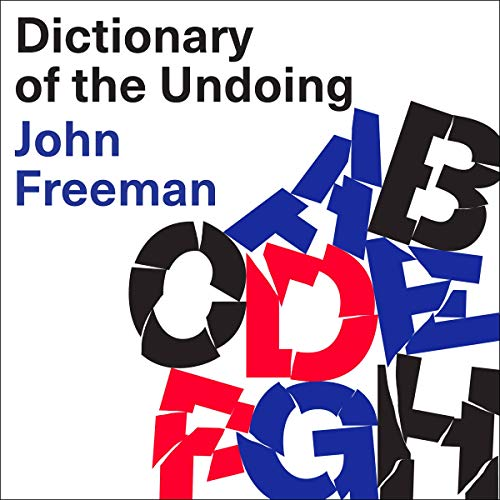 Dictionary of the Undoing audiobook cover art