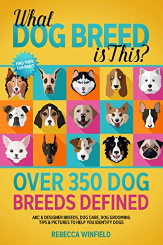 What Dog Breed is This? - Over 350 Dog Breeds Defined: AKC & Designer Breeds, Dog Care, Dog Grooming Tips & Pictures to Help You Identify Dogs