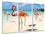 Cuadro Fotográfico Paisaje Flamencos en la Playa Tamaño total: 97 x 62 cm XXL