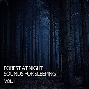 Forest At Night: Sounds For Sleeping Vol. 1