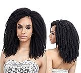 FreeTress Jamaican Twist Braid 10' Crochet...