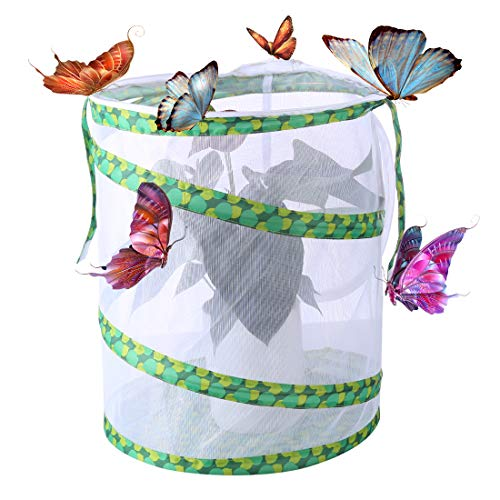 Seciie Schmetterlinge Züchten Schmetterlingsgarten für Fang, Schmetterling Habitat - 30×30×35cm
