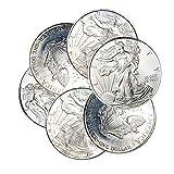 1995-1999 American Silver Eagle Toned Spots 1...