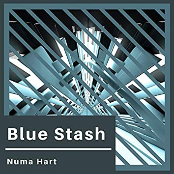 Blue Stash