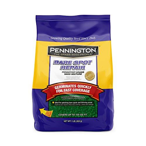Pennington 100085410 Bare Spot Repair Grass Seed, 1 lb