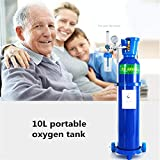 DINGQING Inicio Botella de oxígeno médico 10L portátil de oxígeno del Tanque con el Carro de la Mujer Embarazada de Edad Avanzada oxígeno Absorbente,Azul