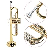 Immagine 2 nannday strumento a tromba in