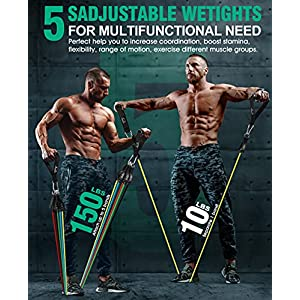 Resistance Bands Set with Handles - Exercise Bands for Working Out - Strength Training Equipment for Exercise Fitness, Gym, Home Workout (Set 17)