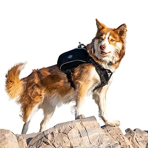 Bum's Pack Dog Backpack, Dog Hiking Backpack, Camping and Travel Saddlebag for Dog, Hiking Pack for Medium & Large Dog… (Large, Black)