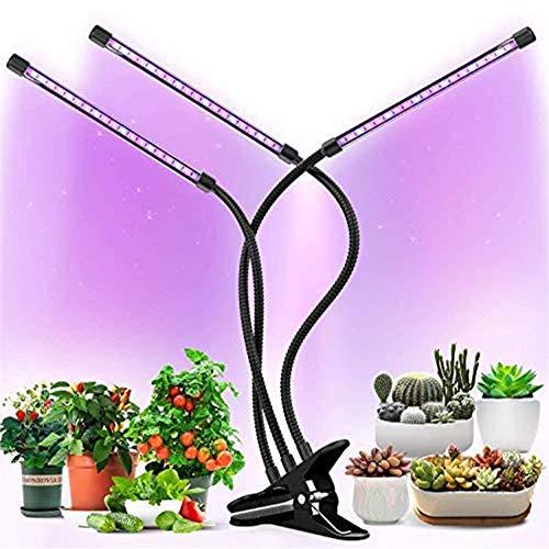 WRQ 30W LED Pflanzenlampe, Einstellbar Volles Spektrum Doppelschalter Pflanzenlicht Gemüse Und Blumen Zimmerpflanzen