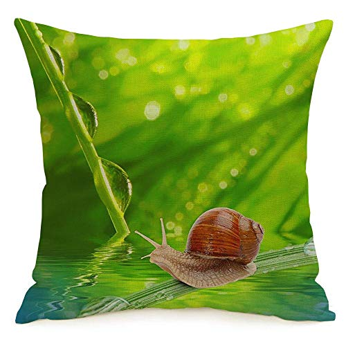 Decorative Throw Pillow Cover Morning Ecology Leaf Dew On Spring Grass Animals Wildlife Shallow Textures Springtime Animal Makro Linen Cozy Square Cushion Case for Couch Bed Living Room 16 x 16 Inch