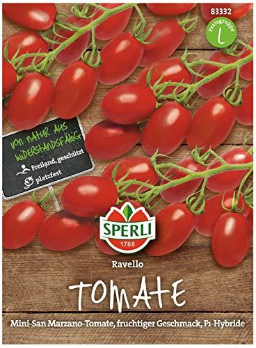 Sperli Premium Tomaten Samen Ravello ; Mini San Marzano ; Cherrytomaten ; Tomaten Saatgut