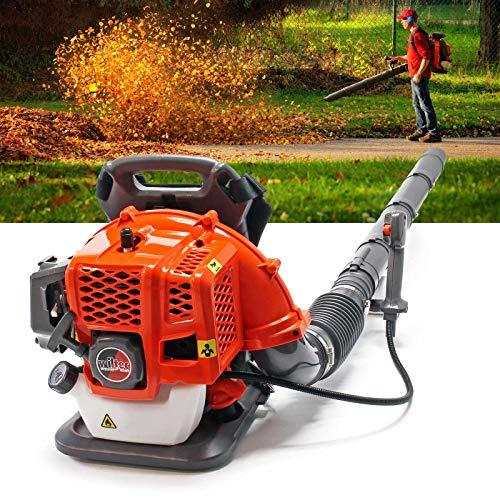 Soplador de hojas con mochila Motor gasolina 1,7CV 2 tiempos Incluye accesorios Mantenimiento jardín