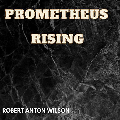 Prometheus Rising cover art
