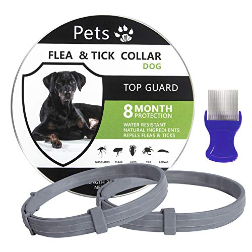 One Size Fits All Gray CRUZYO Flea and Tick Prevention for Dogs Waterproof Best Protection and Adjustable 8 Month Essential Natural Herbal Oil