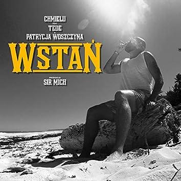 WSTAN